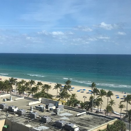 picture of courtyard fort lauderdale beach. Black Bedroom Furniture Sets. Home Design Ideas