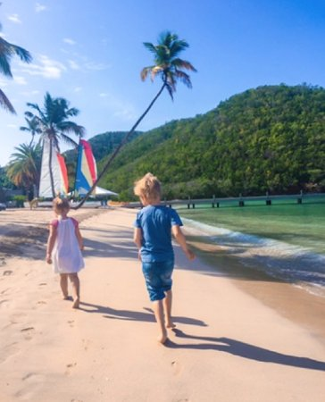 Carlisle Bay Antigua: Sail boats to rent, lovely sand beach