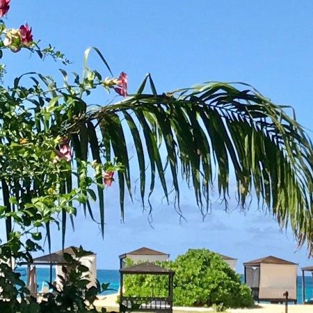 Turners Beach, Antigua : photo6.jpg