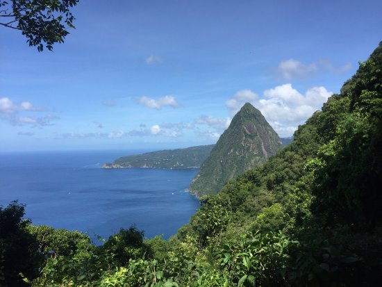 Castries, St. Lucia: little piton I'm on the big one going up!