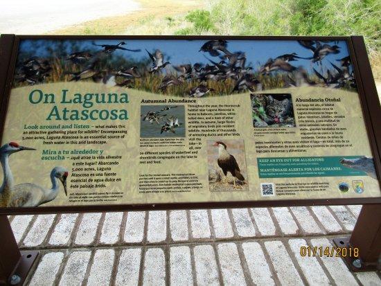 Texas Gulf Coast, TX: Signage in area describing flora and fauna