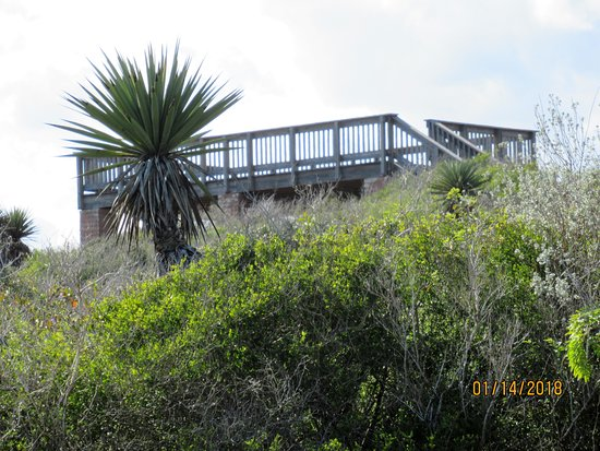 Texas Gulf Coast, Teksas: Raised deck at Red Head Ridge