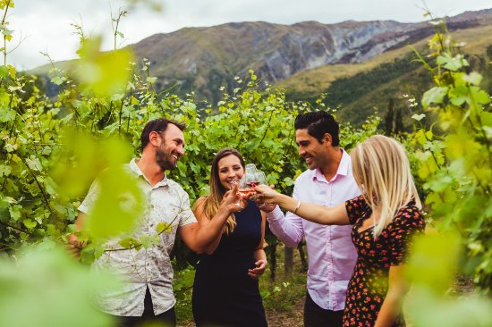 Altitude Wine Tours