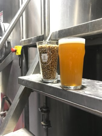 Malvern, PA: Cool shot of beer with grain sitting on the brewhouse step.