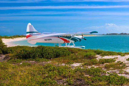 Key West Seaplane Adventures: Seaplane on tour