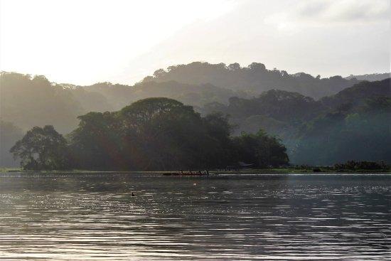 Panama Canal Fishing張圖片
