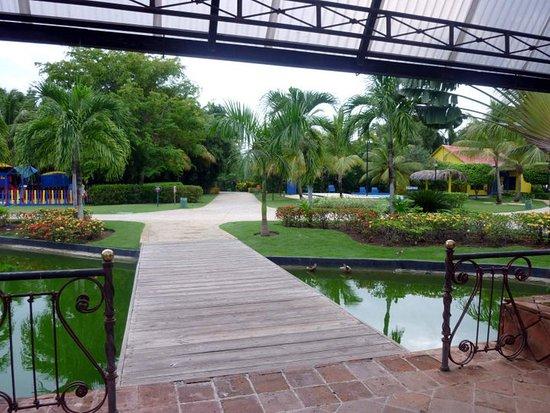 Caribe Club Princess Beach Resort & Spa : Linas áreas verdes con vegetación y fauna