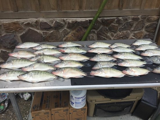 Grenada, MS: slab masters guided fishing