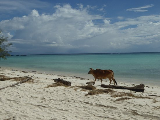 Pulau Mantanani Besar, Malasia: Some visitors on the beach in the morning or evening