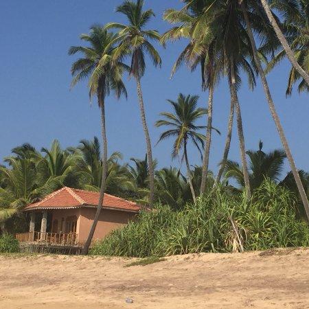 Kahandamodara, Sri Lanka: photo0.jpg