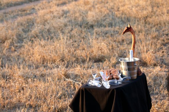 Timbavati Private Nature Reserve, South Africa: A birthday surprise ... cupcakes & champagne at sunset!