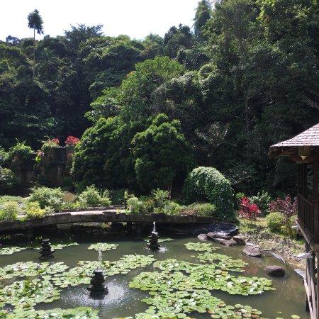 가야섬 사진