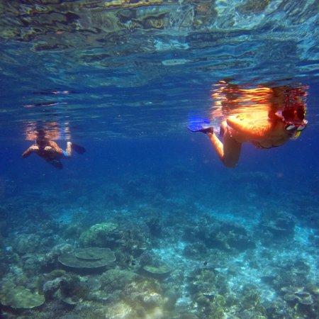 Compass Charters & Ocean Adventures : photo0.jpg