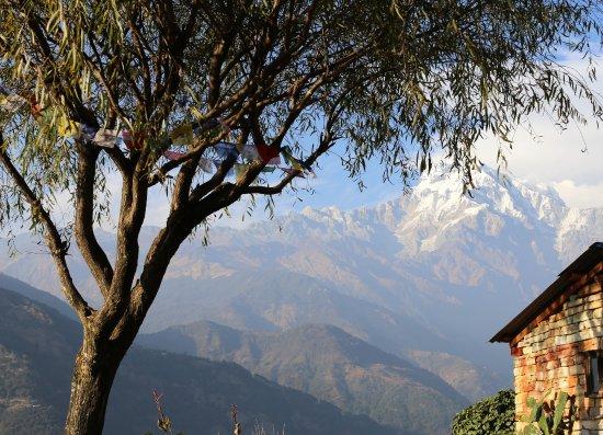 Happy Treks Nepal - Day Tours: Tolka