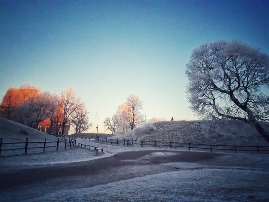Old Uppsala Museum: The thing mound and the church.