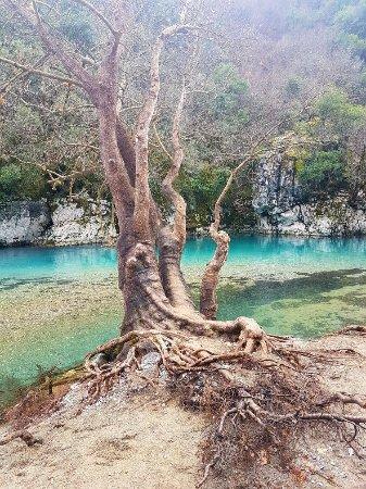 Vikos, Greece: 20180112_170304_large.jpg