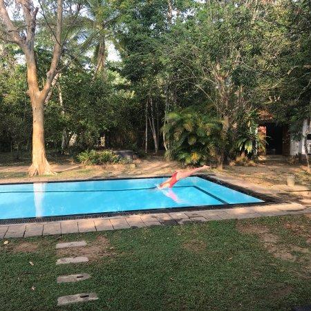 Gampola Estate Bungalow, Holiday Bungalows in Tea Estates