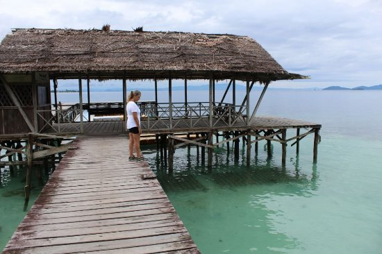 Img 20180110 wa0053 picture of waiwo dive resort raja ampat tripadvisor - Raja ampat dive resort reviews ...