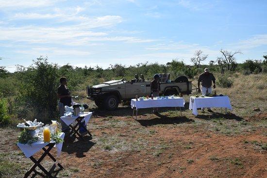 Potret Madikwe Game Reserve