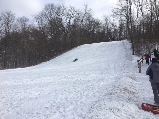 Lewis Center, OH: The sled hill at the park