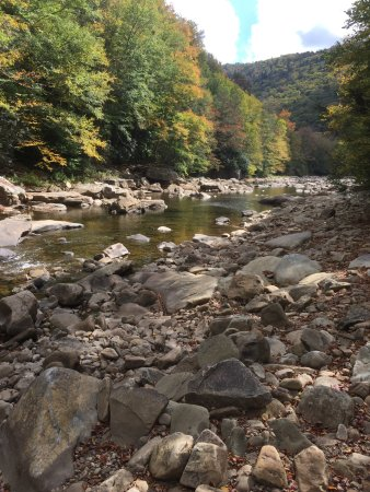 Durbin and Greenbrier Valley Railroad: Bedrock near the stream