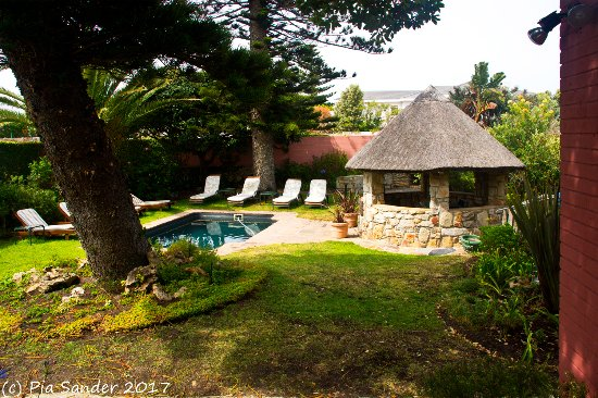 House on Westcliff: Garden with a small pool at House of Westcliff, Hermanus, S.A.