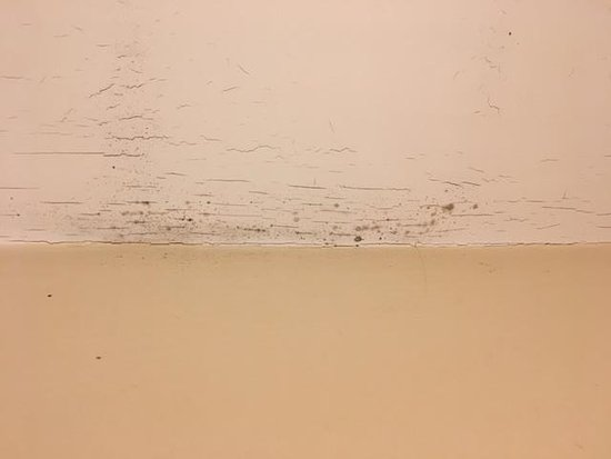 Cuckfield, UK: Mould, cracking paint