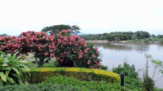 Dusit Island Resort Chiang Rai Photo