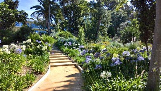 Пако-де-Аркос, Португалия: Magnificent garden!