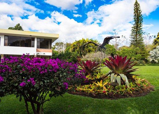 Santo Domingo de Heredia, Costa Rica: Beautiful garden outside my room