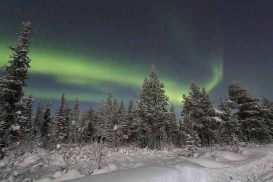 LapplandMedia & PhotoAdventures: aurora