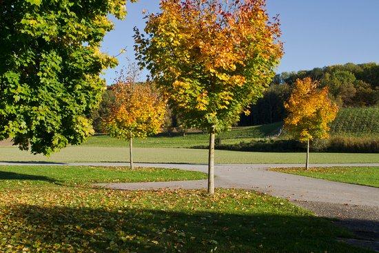 Ansfelden, Austria: Herbst