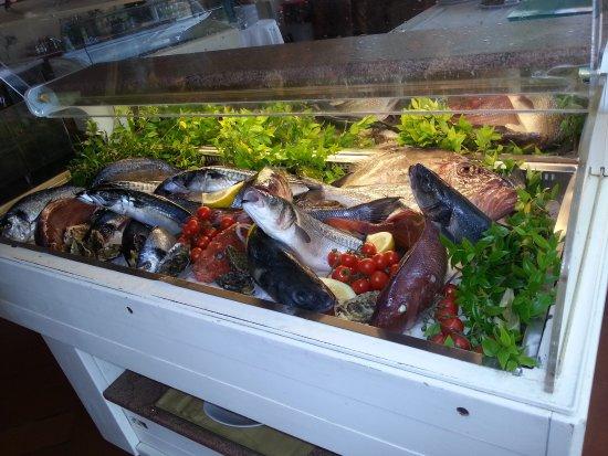 Portisco, Italie : Vetrina del Pesce