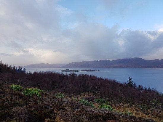 Highland Titles Nature Reserve: 20180115_110110_large.jpg