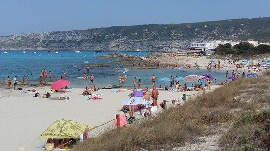 Es Calo, Spanien: spiaggia