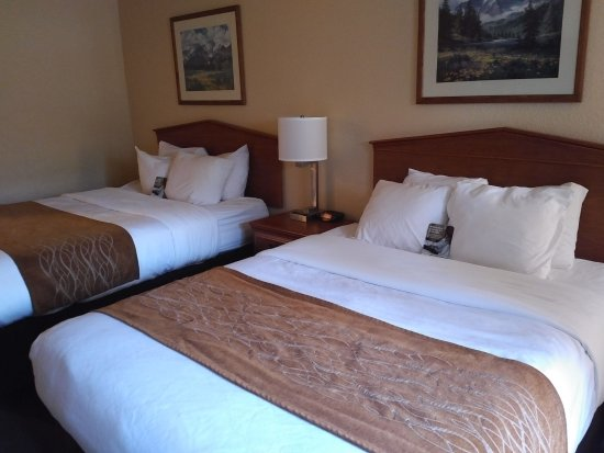 Two queen bedroom at Comfort Inn & Suites in Tualatin, OR