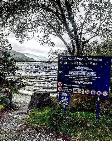 Killarney Nationalpark: Great places to pull off and take pictures!