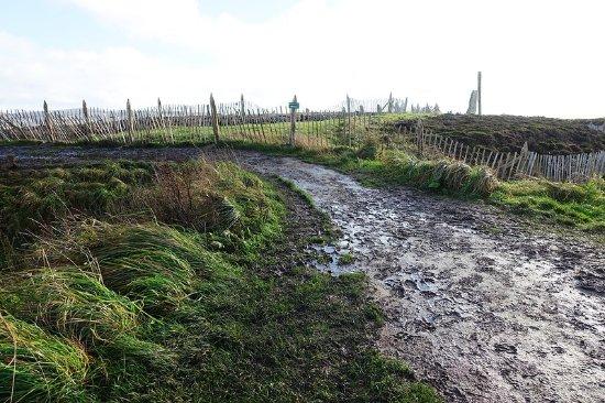 Ring of Brodgar: Болото и грязь у наследия ЮНЕСКО