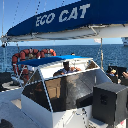 Ecocat Catamaran Tours : photo0.jpg