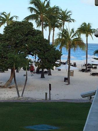 Bucuti & Tara Beach Resort Aruba : taken from our room 231