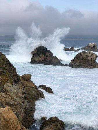 Point Lobos State Reserve: photo0.jpg