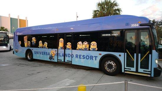 Universal S Cabana Bay Beach Resort Buses De