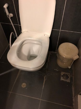 Amman Airport Hotel: water leaking from toilets all over bathroom floor