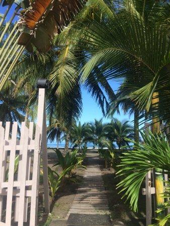 Hotel Playa Westfalia: Camino a sentir el caribe