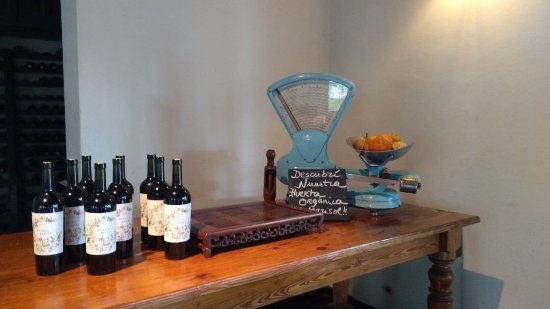 Postales Boutique Wine Hotels - Valle de Uco: IMG-20180115-WA0075_large.jpg