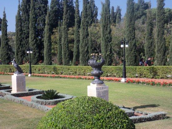 Bahai Gardens  and Shrine: in the garden 4