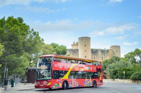 Palma City Sightseeing with Boat Ride...