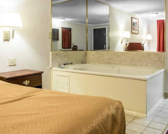 Madison Heights, MI: Guest room