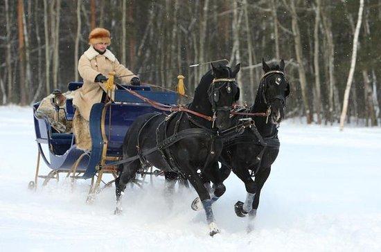 Horse drawn sled in Kuskovo