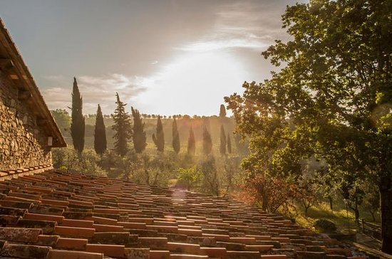Buongiorno Tour de vino de Toscana en...